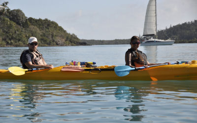 Whitsunday Salty dog - Kayak Tours - paddle