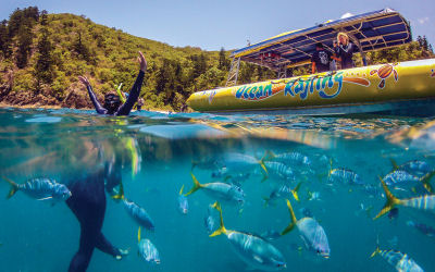 Ocean Rafting-Whitsunday Sailing Day Tour -snorkel;