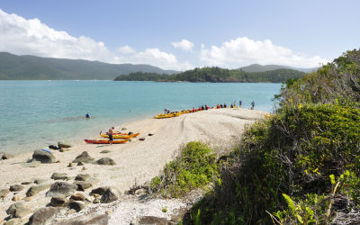 Whitsunday Salty dog - Kayak Tours - beached