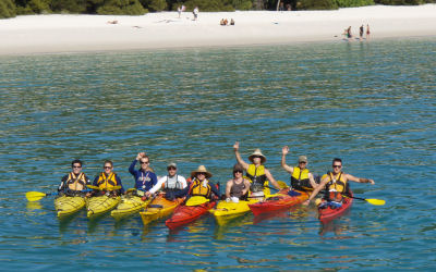 Whitsunday Kayak Tours - line up