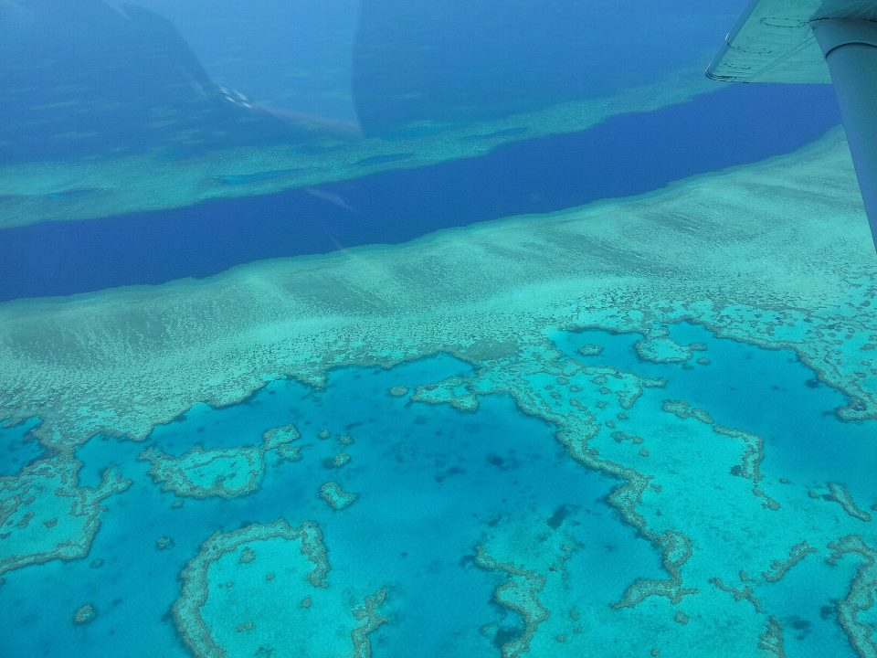 GSL Aviation Reef and Island Scenic Flight - reef overview